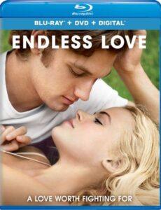 Endless Love 2014 BluRay 300MB Dual Audio In Hindi 480p