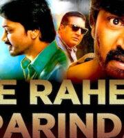 Be Rahem Parinda 2019 Hindi Dubbed 720p HDRip 850mb