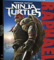 Teenage Mutant Ninja Turtles 2014 BluRay 300MB Dual Audio In Hindi 480p