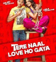 Tere Naal Love Ho Gaya 2012 HDRip 350MB 480p Full Hindi Movie Download