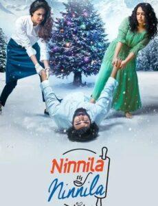Ninnila Ninnila 2021 HDRip 300MB 480p Full Hindi Dubbed Movie Download