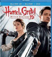 Hansel & Gretel: Witch Hunters 2013 BluRay 300MB Dual Audio In Hindi 480p