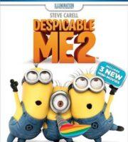 Despicable Me 2 (2013) Dual Audio [Hindi English] BluRay 720p 700mb