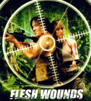 Flesh Wounds 2011 Dual Audio Hindi DVDRip 480p 270mb