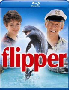 Flipper 1996 Dual Audio Hindi 480p BluRay 300mb