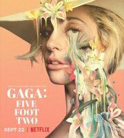 Gaga Five Foot Two 2017 English 480p WEBRip 300MB ESubs