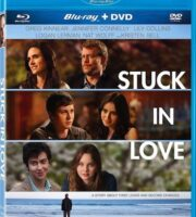 Stuck in Love 2012 Hindi Dual Audio BRRip 480p 300mb ESub