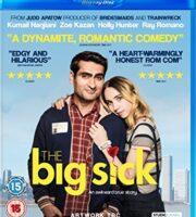 The Big Sick 2017 English 720p BRRip 1GB ESubs