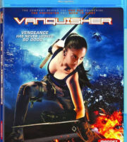 The Vanquisher 2009 Hindi Dubbed BRRip 480p 300mb