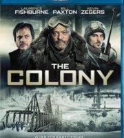 The Colony 2013 Dual Audio [Hindi Eng] BRRip 480p 300mb