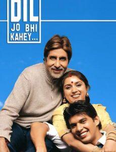 Dil Jo Bhi Kahey 2005 HDRip 720p Full Hindi Movie Download
