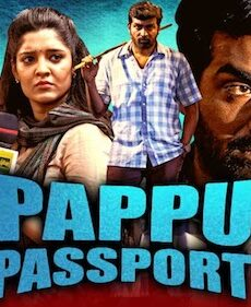 Pappu Passport 2020 Hindi Dubbed 720p HDRip 1GB