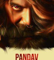 Pandav – The Punch 2020 Hindi Dubbed 720p HDRip 800MB