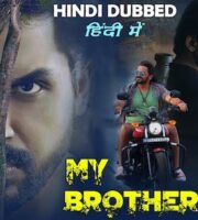 My Brother Vicky 2020 Hindi Dubbed 720p HDRip 999MB